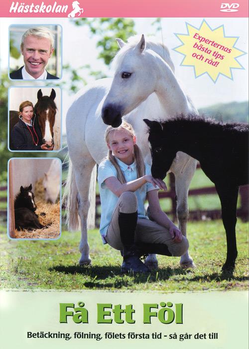 Hästskolan – Få ett föl